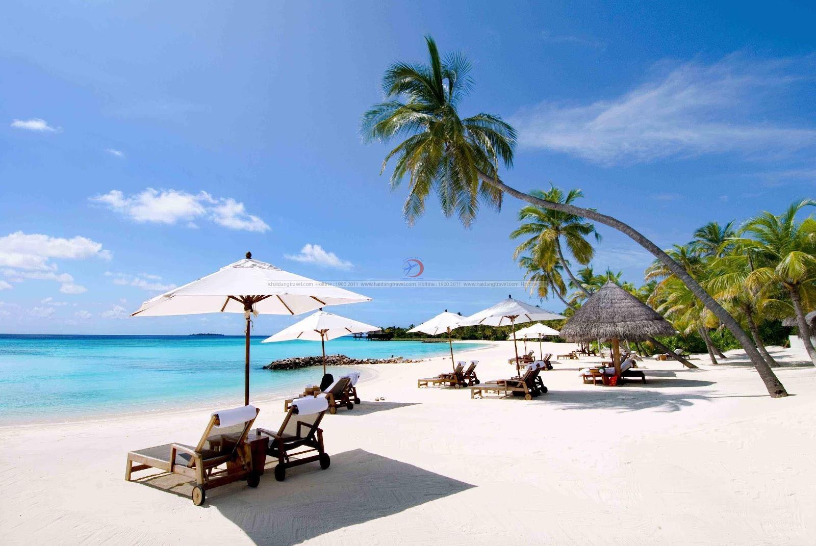 Làm thế nào để chọn được tour du lịch Nha Trang giá rẻ?