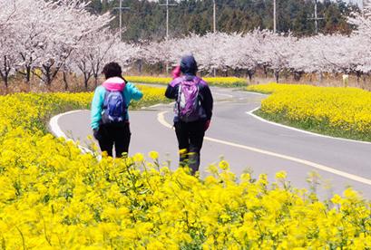 Tour Hàn Quốc 2018 Đảo Jeju, Love Land  Seoul, Nami, Running Man