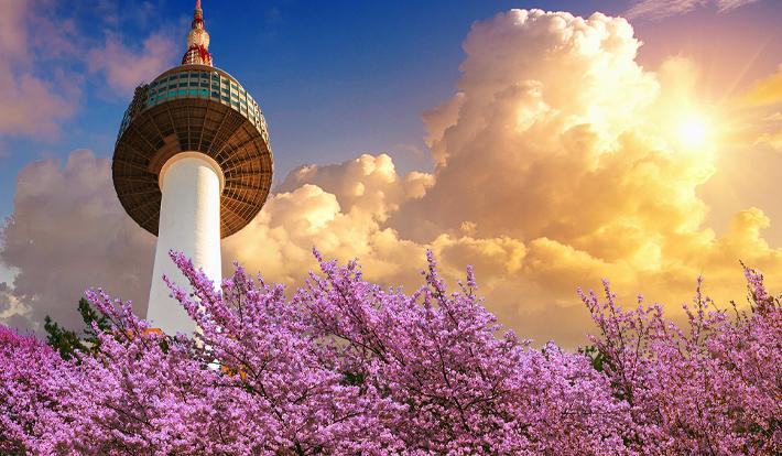 Tour Hàn Quốc 2019 Busan – Nami – Everland – Seoul