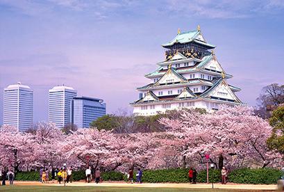 Tour Nhật Bản 2019 Ibaraki – Yamanashi – Tokyo (Mùa Hoa Anh Đào)
