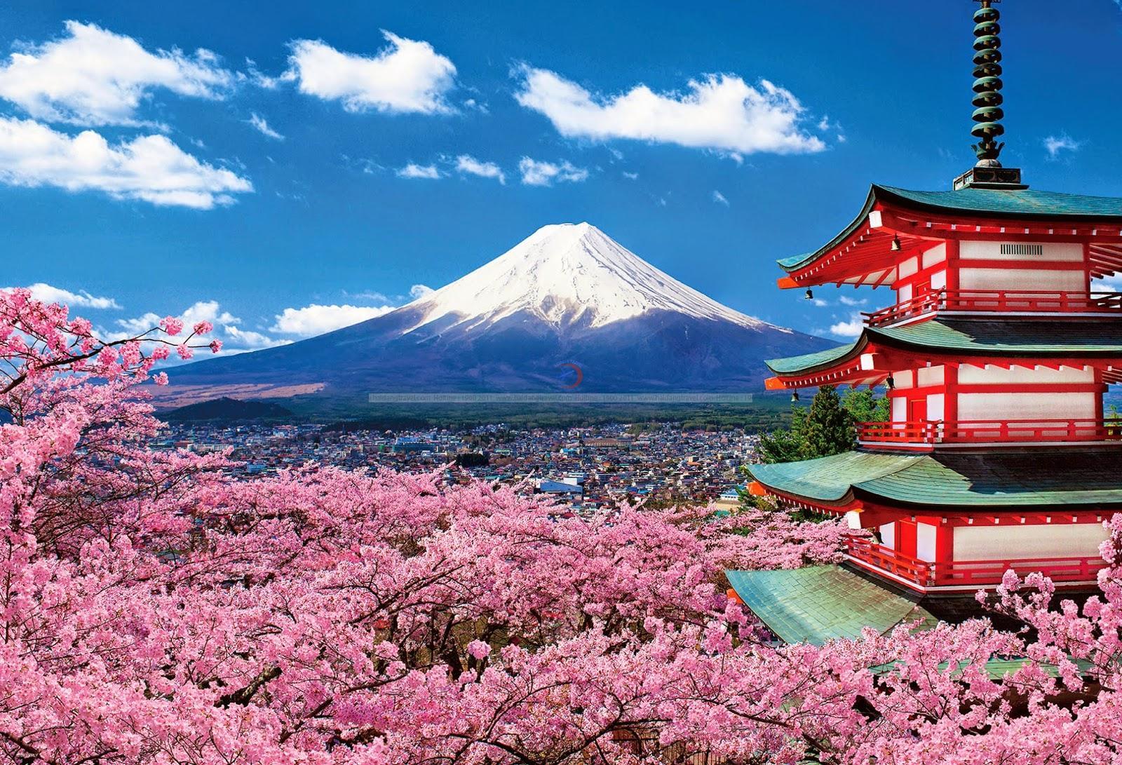 Tour Nhật Bản giá rẻ - sự lựa chọn hoàn hảo cho bạn và gia đình