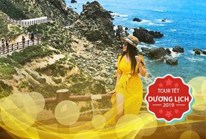 Tour Quy Nhơn, Măng Đen Tết Dương Lịch Khám Phá, Eo Gió, Đảo Kỳ Co, 3 Thác 7 Hồ