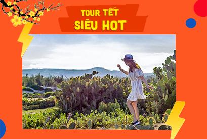 Tour Quy Nhơn Phú Yên Tết Âm Lịch, Khám Phá Eo Gió, Kỳ Co, Đầm Ô Loan, Bằng Xe hấp dẫn