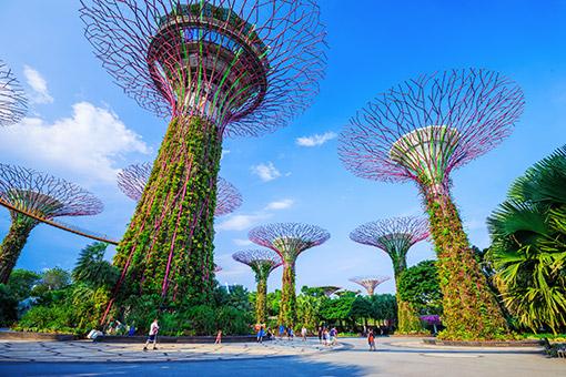 Tour Singapore - Penang cùng Du thuyền 5 sao Voyager of the Seas