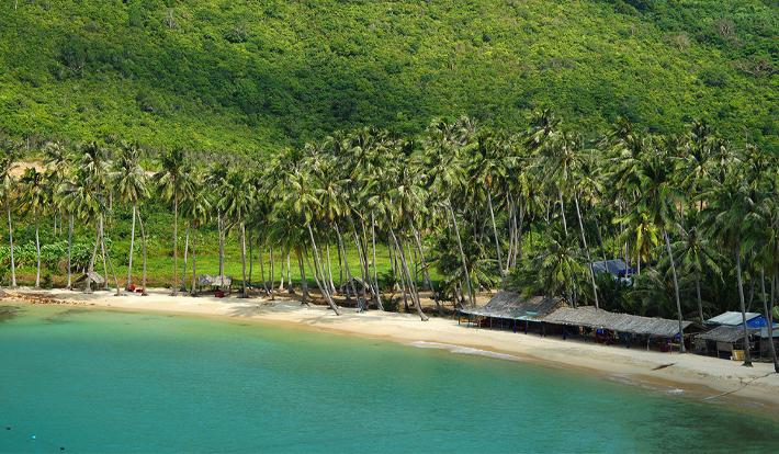 Tour Đảo Nam Du,Tiệc BBQ Hải Sản, Bar Biển Và Thưởng Thức Cháo Nhum