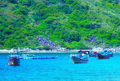 Tour du lịch Nha Trang - Đảo Bích Đầm VIP buffet Hải Sản 90 Món Hấp Dẫn